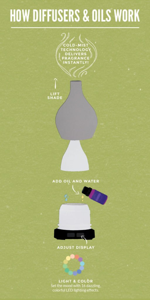 oil and scentsy diffusers instructions