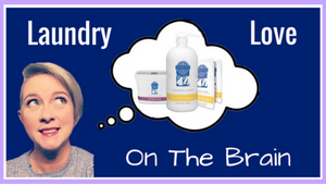 Scentsy Laundry Liquid Products
