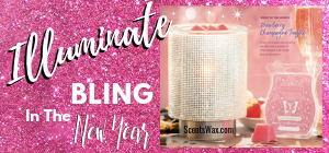 Scentsy Illuminate Warmer January 2019