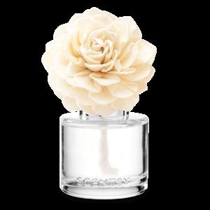 Scentsy Amazon Rain Fragrance Flower