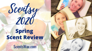 Scentsy Scent Reviews