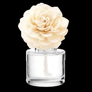 Scentsy Cozy Cardigan Darling Dahlia Fragrance Flower