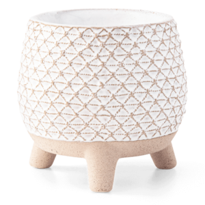 Take A Stand Scentsy Warmer