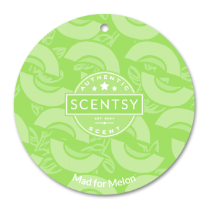 Mad For Melon Scentsy circle car freshener
