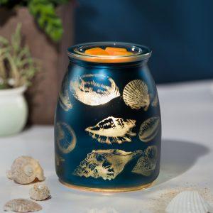 Tide Pool Blue Seashell Scentsy Warmer
