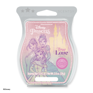 Scentsy Disney Princess True Love Awaits Wax Melt Bar