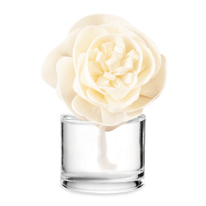 Scentsy Christmas Cottage Buttercup Belle Fragrance Flower