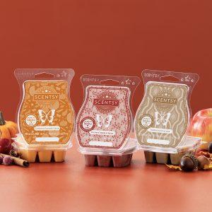 Scentsy Harvest Wax Melt Cranberry Pumpkin Spice Orchard Apple Spice Toasted Acorn Oak