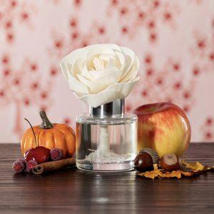 Scentsy Cranberry Pumpkin Spice Buttercup Belle Fragrance Flower